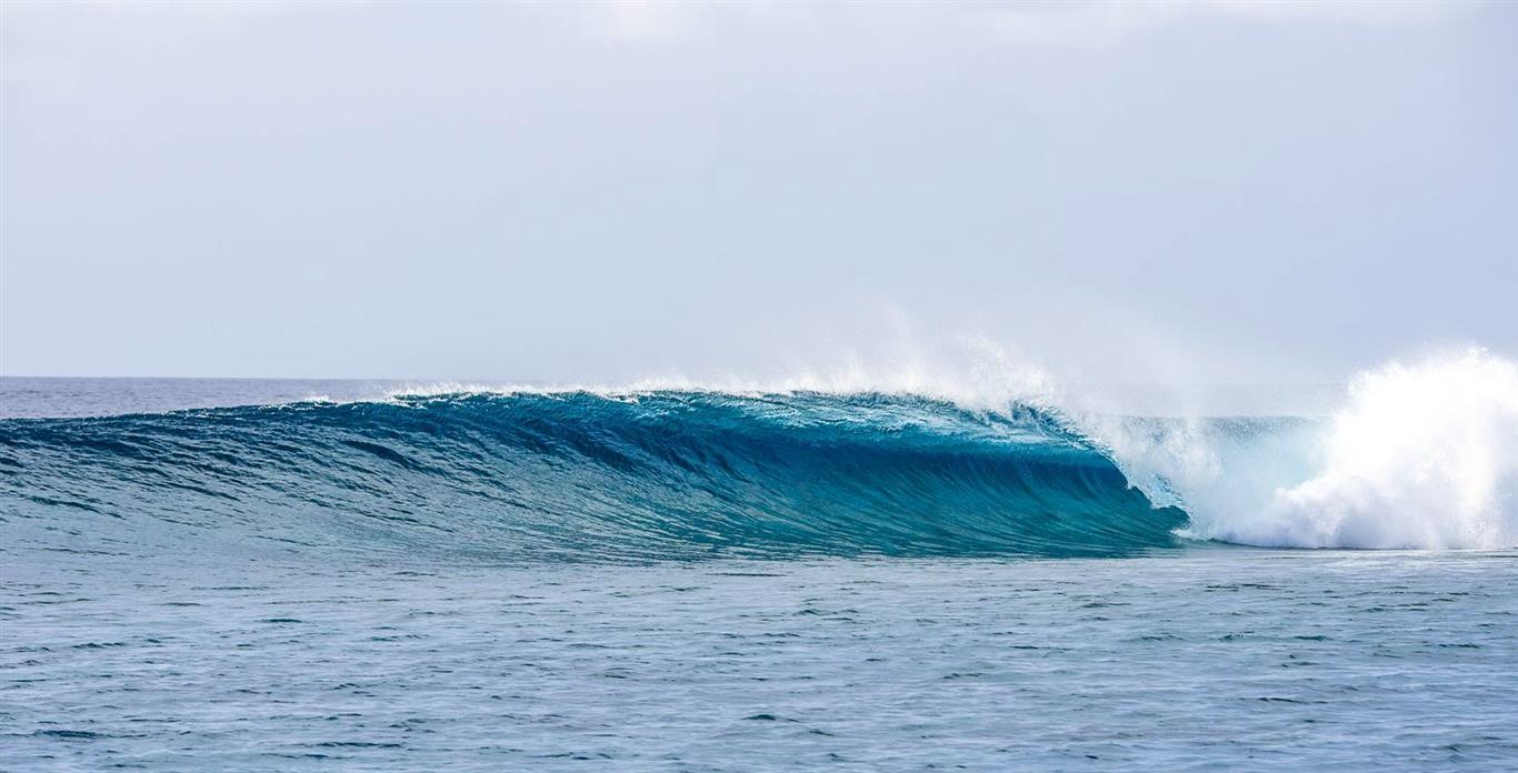 Machines Maldives - Surfing the Maldives | Elysia Surf Charters